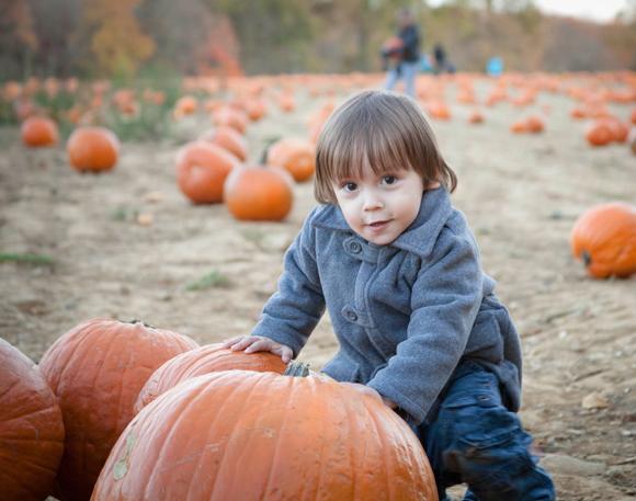 Pumpkinpatch_08